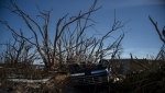 Tropska oluja Umberto formira se u blizini Bahama