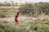 Izveštaj:  Više od 200 miliona ljudi moglo bi da migrira do 2050. zbog klimatskih promena