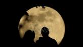 Evropa se dosetila:  Mokraća astronauta za pravljenje betona na Mesecu (VIDEO)