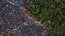 Udvostručeno uništavanje prašuma Amazonije