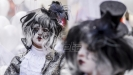 Belgijski karneval skinut s liste UNESKO zbog antisemitizma (VIDEO)