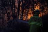 Tri žrtve požara u Australiji, dim stigao do Novog Zelanda (VIDEO)
