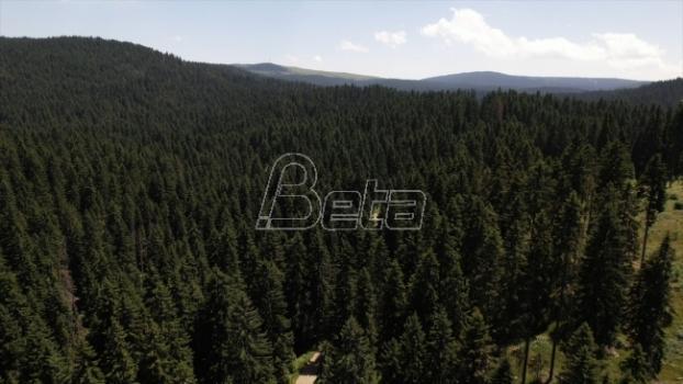 Jankova bara nature reserve on Kopaonka arranged for visitors (VIDEO)