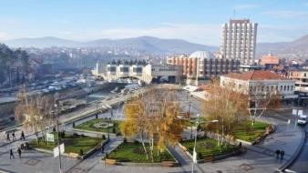 Novi Pazar dobija 8.250 stabala smrče