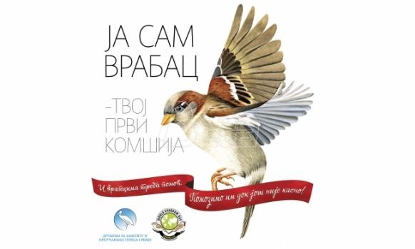 Danas je Medjunarodni dan vrabaca