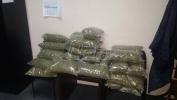 Policija kod Čačka zaplenila 27 kilograma skanka