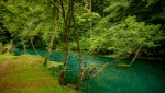 Inicijativa Pravo na vodu traži da se do subote uklone cevi MHE Zvonce iz korita Rakitske reke