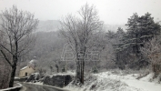 Lovci apeluju da se pomogne divljači na Kosovu