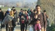 Funkcionerka UNHCR:  Mnogo verodostojnih dojava o nasilnom postupanju prema migrantima