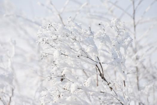 Šest žrtava hladnoće u BiH