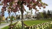 Gradonačelnik Beograda najavio preuredjenje tri velika parka