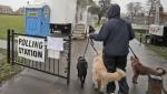 Britanci na glasanje doveli pse, mačke, konje, doneli morske prasiće