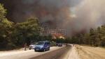 Lokalizovan požar kod Antalije, troje poginulo, više od 50 hospitalizovano (VIDEO)