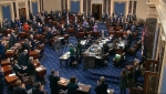 Senat SAD usvojio paket pomoći zbog pandemije