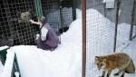 Ruski centar u Velesu brine o divljim životinjama