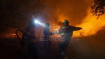 Borba s požarom u Portugaliji, 31 osoba povredjena (VIDEO)