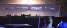 Stado od 40 krava pobeglo iz klanice kod Los Andjelesa