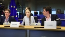 RSE: Težak početak evropskog Zelenog dogovora