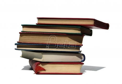 Jedanaest dela u užem izboru za NIN-ov roman godine