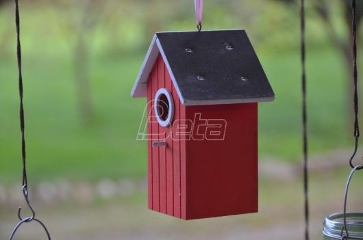 Prokuplje: Oboleli od dečije paralize prave kućice za ptice