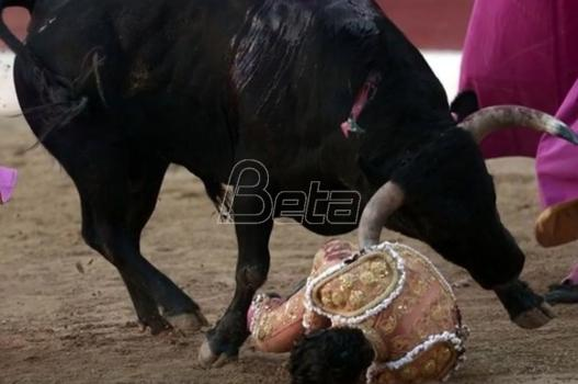 Bik u Francuskoj ubio španskog matadora