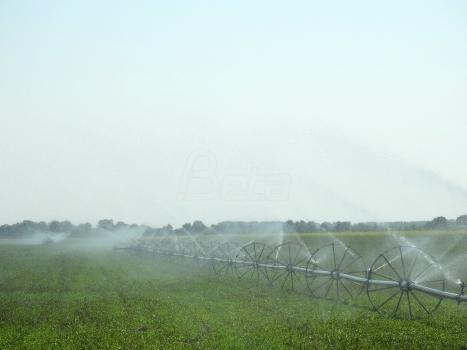 Počinje gradnja četiri sistema za navodnjavanje u Vojvodini