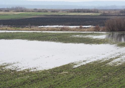 Najavljena regulacija reke koja je poplavila Svilajnac