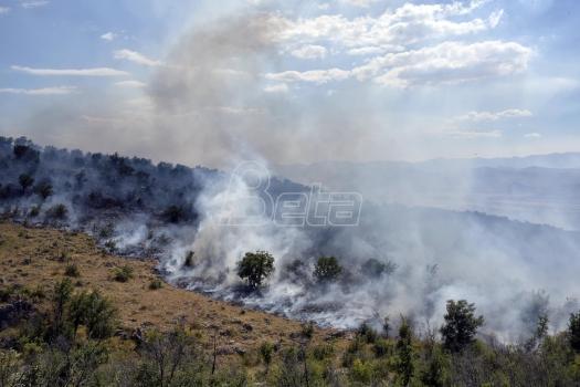 Crna Gora traži medjunarodnu pomoć u gašenju požara