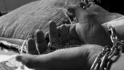 MUP:  Za devet meseci ove godine 28 procesuiranih za trgovinu ljudima